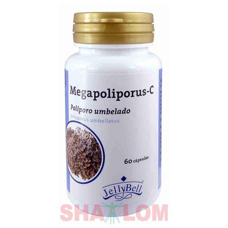 HONGOS MEGAPOLIPORUS C