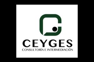 CEYGES CONSULTORÍA E INTERMEDIACIÓN